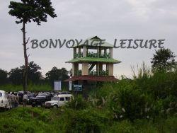 chandrachur watch tower in gorumara national park